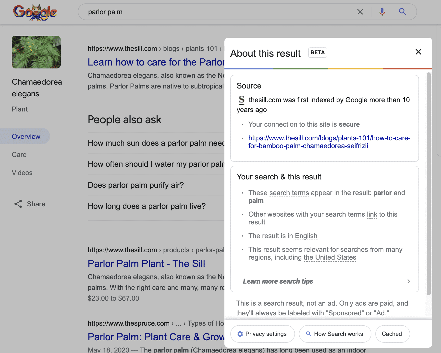 Example of Google About this search feature